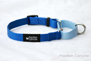 Summer Skye Adjustable Martingale Dog Collar by Papillon Caniche