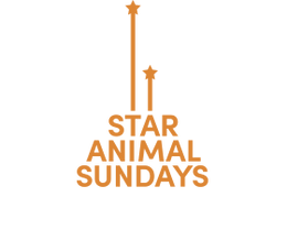 Star Animal Sundays