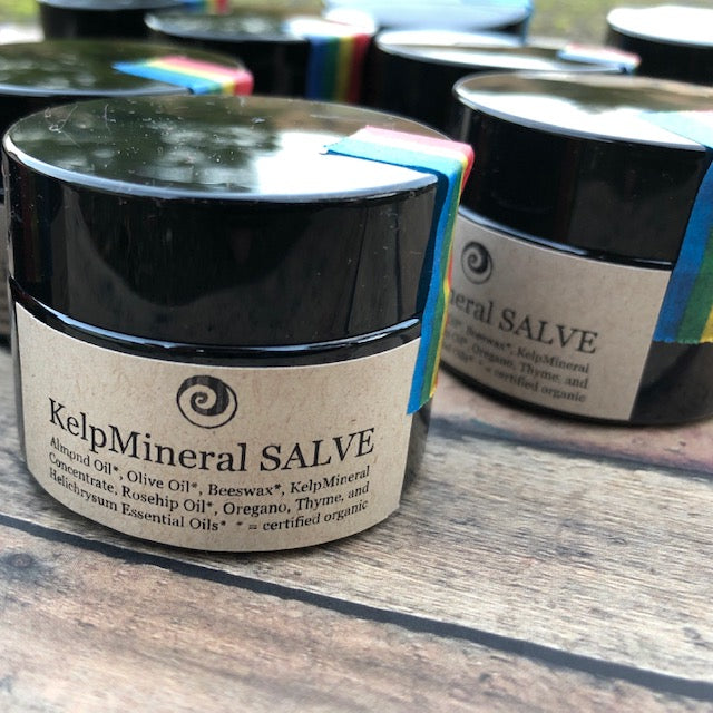 KelpMineral Salve, 1 oz.