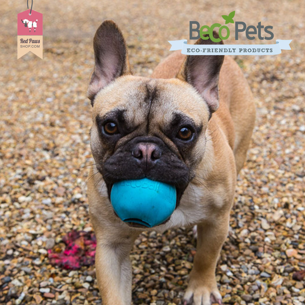 Beco Pets Dog Toy