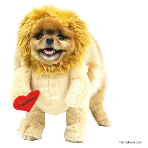 Walking Lion Dog Costume