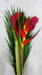 Tropical Bouquet  - Bunch