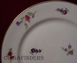 HEINRICH/H & C china VICTORIA (Christine) pattern Soup/Salad/Pasta Bowl @ 9-1/2""