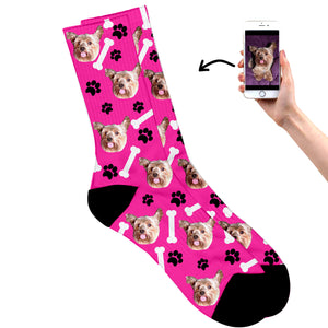 Dog On Socks