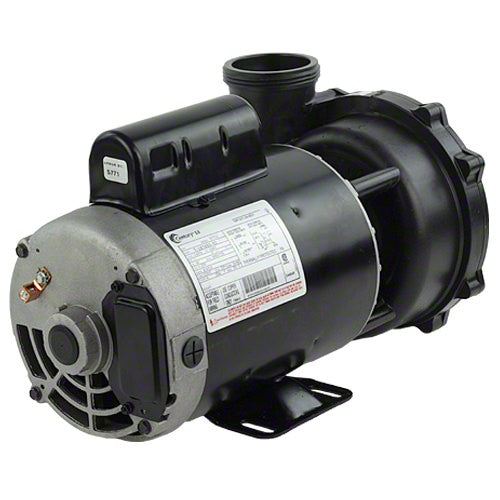 "Waterway Executive 4 HP 2 Speed 2"" Intake 2"" Discharge 56 Frame 230 Volt Pump 3721621-1D"