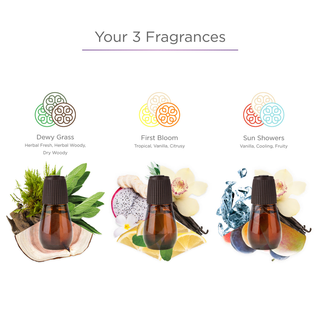 Feel It In The Air Spring Collection - Diffuser Refills
