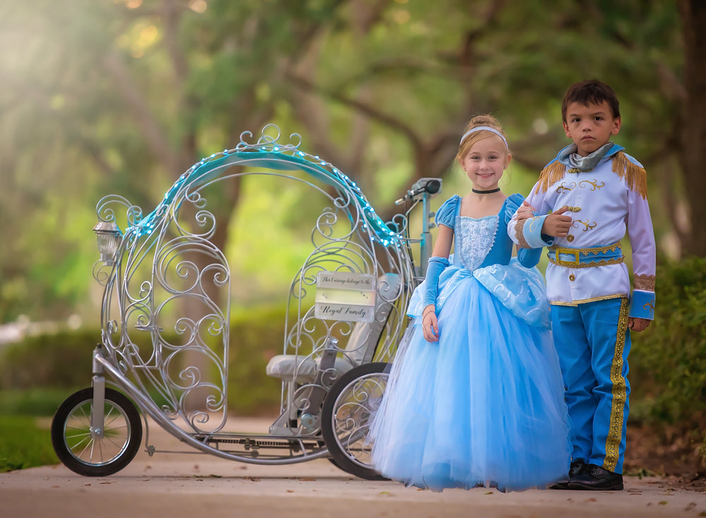 Cinderella Dress Rental - size 2-8 available