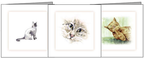 collection of cat sympathy cards