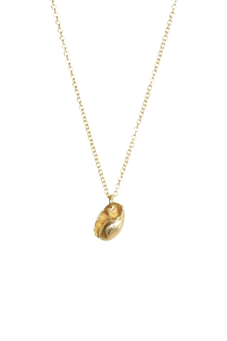Baby Shell Necklace - 14kt Gold Chain