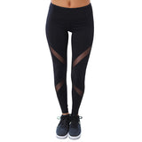 Mesh Design Multi Colours Leggings