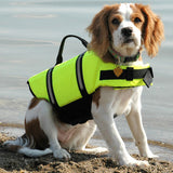Dog Life & Safety Vest for Swimming