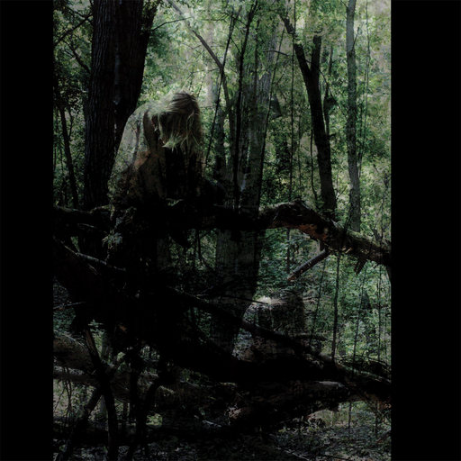 Anamai - Sallows (LP)