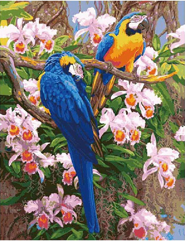 Blue and Yellow Macaws Paint By Numbers Kit