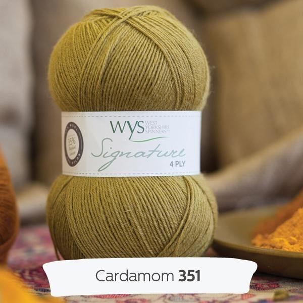 Signature 4Ply Sock Yarn - Spice Rack Solids West Yorkshire Spinners Yarn Mallard 862