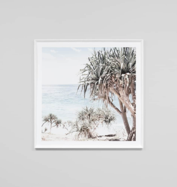 Middle of Nowhere - Coastal Palms Framed Print