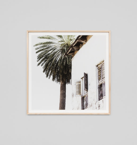 Middle of Nowhere - Palm Window Square Framed Print