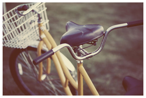 One of the beautiful bicycles found on Mackinac Island. Photographed by Alicia Bock.