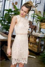 Blush Crochet Lace Dress - Melissa Jean Boutique