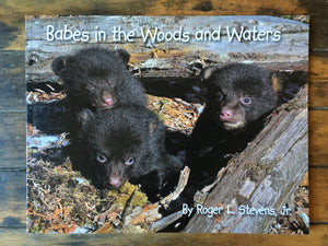 Babes in the Woods and Waters - Book