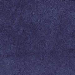 Dark Royal Minky Spa Fleece