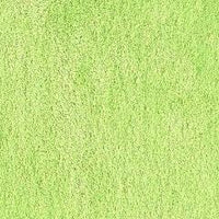 Lime Minky Spa Fleece