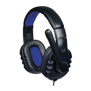 ACE 13 HEADSET USB WITH MIC<p>HS7213BL</p>