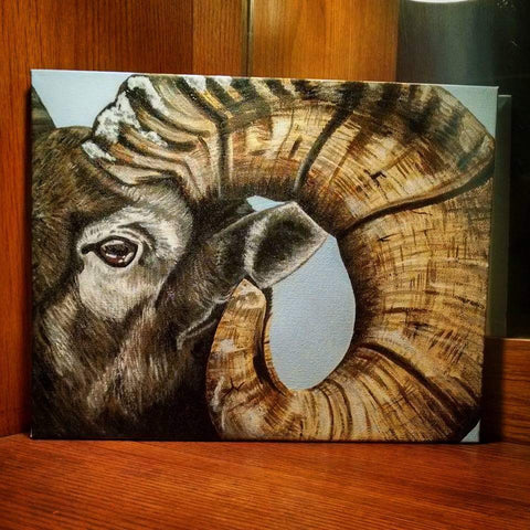 Bighorn Sheep - Original Painting