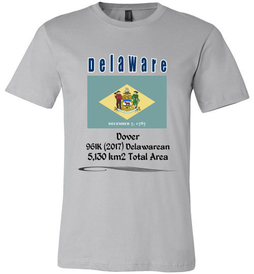 Delaware State Shirt - Flag, Capital, Population, Resident's Name, Total Area - Unisex - Silver