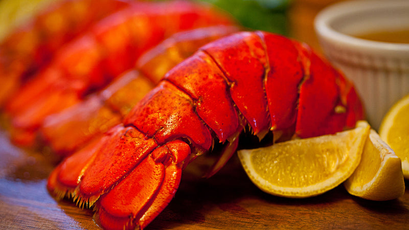 North Atlantic Lobster Tails (14 - 16 oz)
