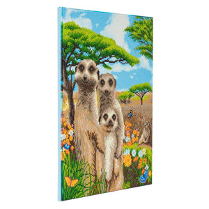 "CAK-A70: ""Meerkat Family"" Framed Crystal Art Kit, 40 x 50cm"