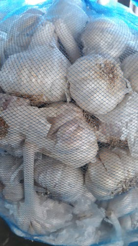 Garlic 5Kg bag - كيس ثوم