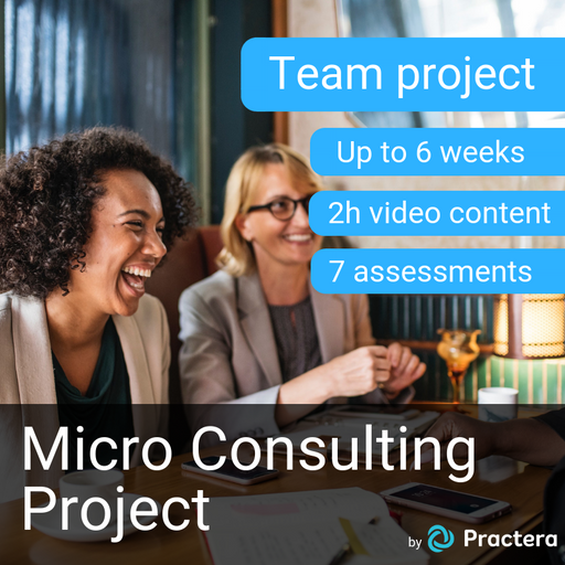 Micro Consulting Project (Up to 6 weeks, 2h video content, 7 assessments)