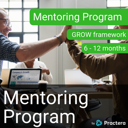 1:1 Mentoring Program - GROW Framework (6-12 months)