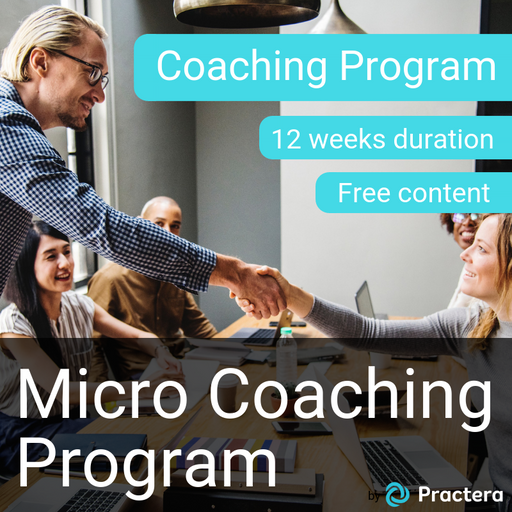 Micro-Coaching Program (3 months)