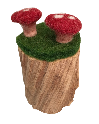 Toadstool Log