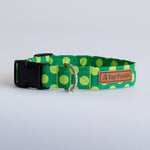 Lime Spots Dog Collar