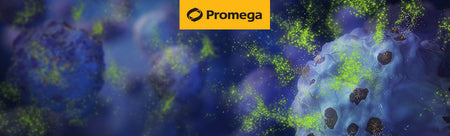 Webinar | Ask the Experts: Cell Health Assays Q&A