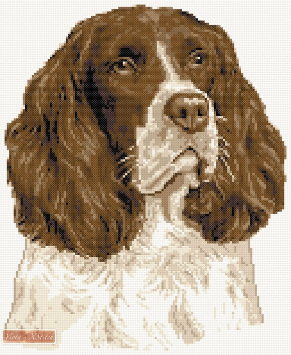 Springer Spaniel No5 counted cross stitch kit