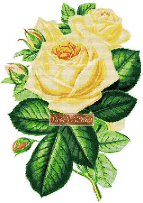 Yellow rose counted cross stitch kit