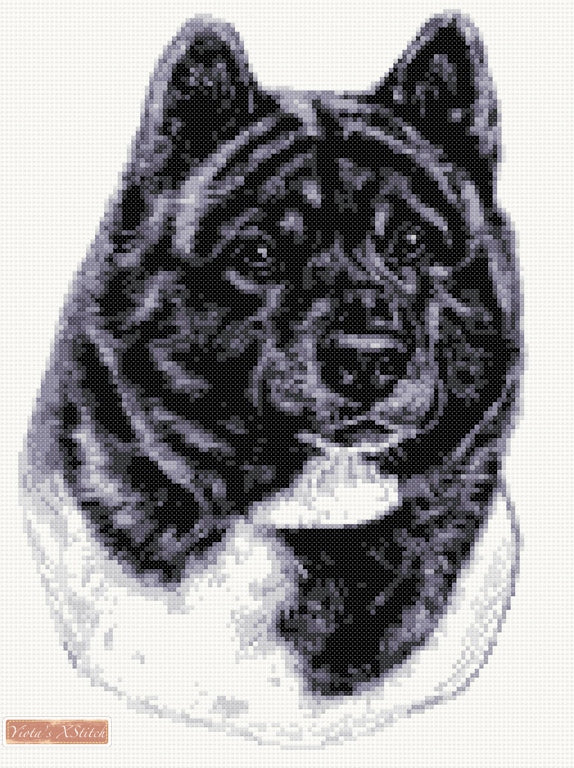 Akita black and white counted cross stitch kit