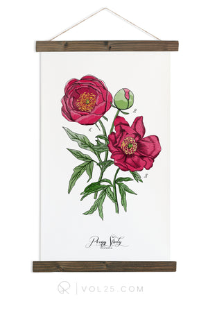 Peony Study Vol.1 | Canvas Wall hanging | more options VPB201 - vol25