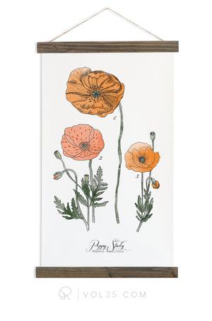 Poppy Study Vol.1 | Scientific Canvas Wall hanging | more options VPB101 - vol25