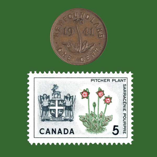 Newfoundland Penny and Stamp
