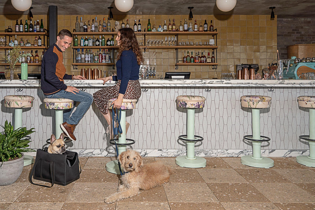 A Guide to Eating and Drinking With Your Dog: Manhattan, NY