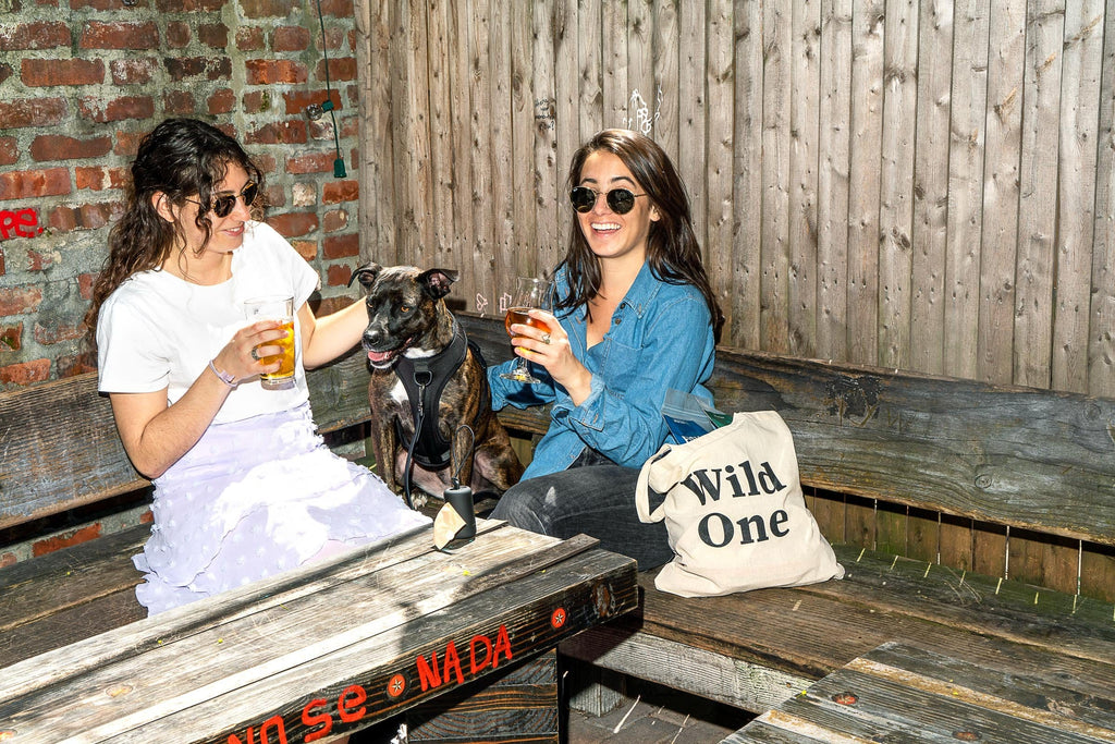 A Guide to Eating and Drinking With Your Dog: Brooklyn, NY