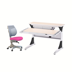 Ergo-Smart Desk + Speed Ultra Chair