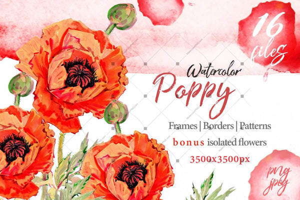 Watercolor Red Poppy Png Set Digital