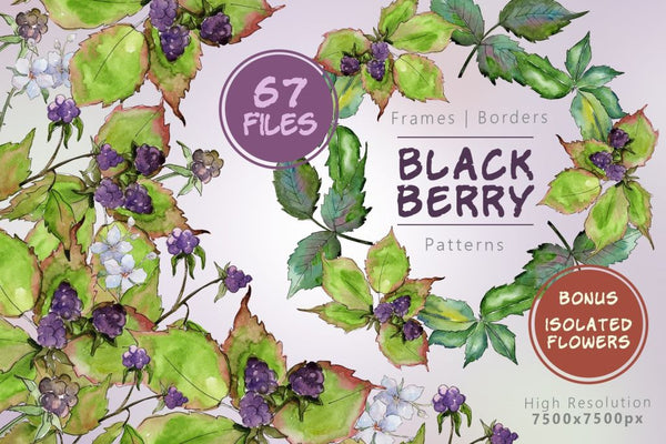 Sweetly Blackberry Png Watercolor Set Digital