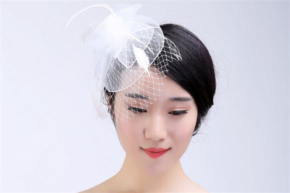 2018 Hot Sale New Arrival Birdcage Bridal Veils White Feather Pearl