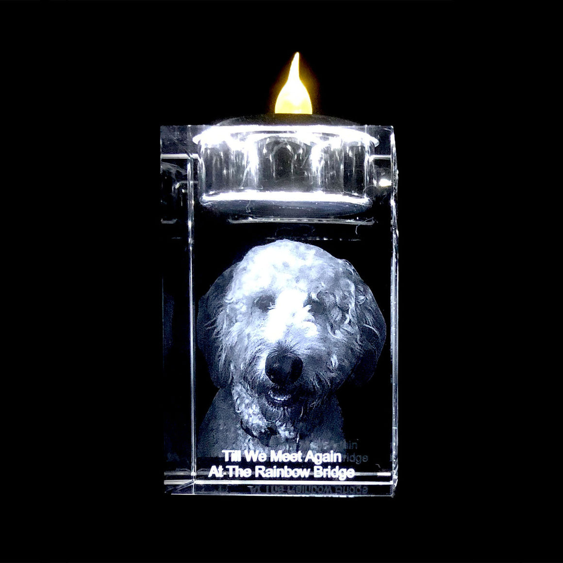 "PET CANDLE HOLDER 2""x3""x2"" Starting at"